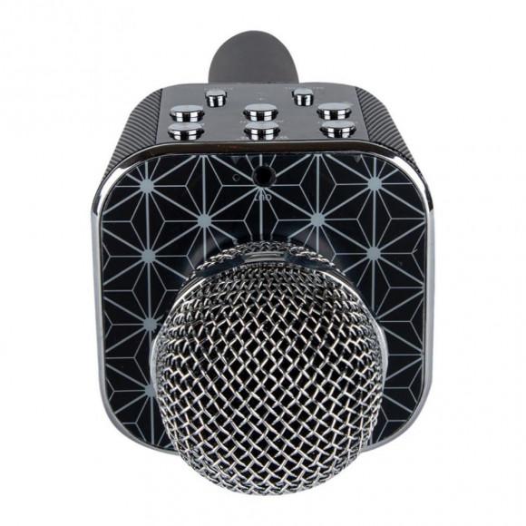 Микрофон караоке беспроводной wster в Киеве